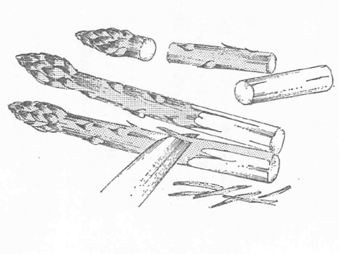 アスパラガスの切り方を示した絵です。3つに切り分け、根本は皮をむいておきます。